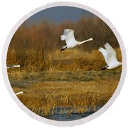Tundra Flight Round Beach Towel
