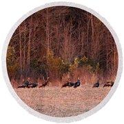 Turkey - Wild Turkey - Seventeen Longbeards Round Beach Towel