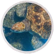 Turtle Underwater,high Angle View Round Beach Towel