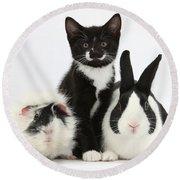 Tuxedo Kitten With Black Dutch Rabbit Round Beach Towel