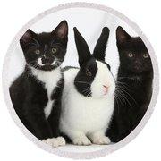 Tuxedo Kittens With Dutch Rabbit Round Beach Towel