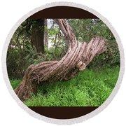 Twisted Tree 1123 Round Beach Towel