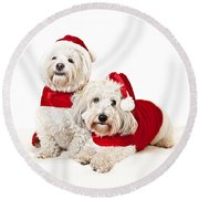Two Cute Dogs In Santa Outfits Round Beach Towel