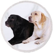 Two Labs Round Beach Towel