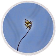 Two-of-a-kind Round Beach Towel