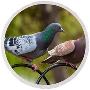 Two Pigeons Round Beach Towel