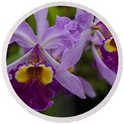 Two Pink Purple Orchids Round Beach Towel
