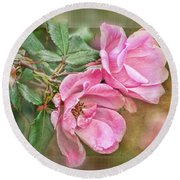Two Pink Roses II Blank Greeting Card Round Beach Towel