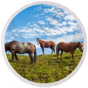 Two Quarters And An Appaloosa Round Beach Towel