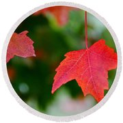 Two Red Maple Leaves Round Beach Towel