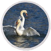 Two Swans Playing Round Beach Towel