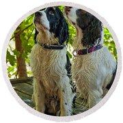 Two Wet Puppies Round Beach Towel