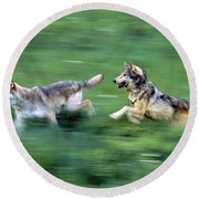 Two Wolves Running Through Meadow Round Beach Towel