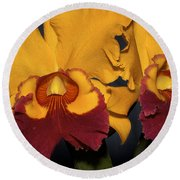 Two Yellow And Red Orchids Round Beach Towel