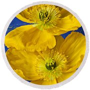 Two Yellow Iceland Poppies Round Beach Towel