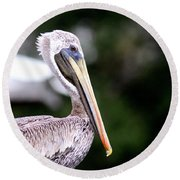 Ugly Beauty - Brown Pelican Round Beach Towel