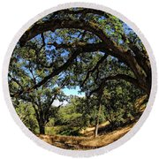 Under The Oak Canopy Round Beach Towel