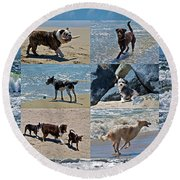 Uninhibited Creatures Round Beach Towel