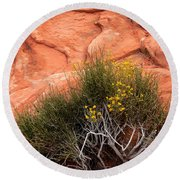 Valley Of Fire Yellow Vegetation Nevada Round Beach Towel