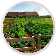 Vegetable Farm Round Beach Towel by Carlos Caetano