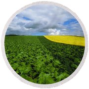 Vegetables, Cabbages Round Beach Towel