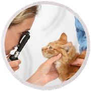 Vet Examining Kitten Round Beach Towel