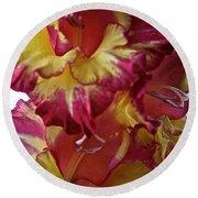 Vibrant Gladiolus Round Beach Towel by Susan Herber