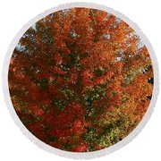 Vibrant Sugar Maple Round Beach Towel