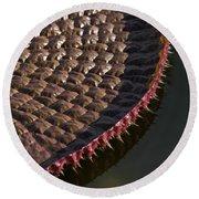 Victoria Amazonica Leaf Vertical Round Beach Towel