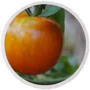 Vine Ripe Tomato Round Beach Towel