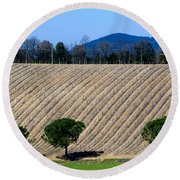 Vineyard On A Hill With Trees Round Beach Towel