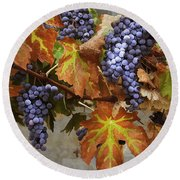 Vineyard Splendor Round Beach Towel