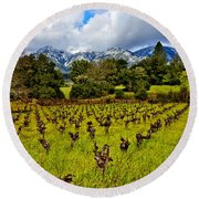 Vineyards And Mt St. Helena Round Beach Towel by Garry Gay