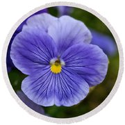 Violets Are Blue Round Beach Towel