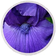 Vision In Violet Round Beach Towel