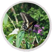 Visit From A Black Swallowtail Round Beach Towel