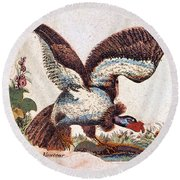 Vulture Attacking A Snake Round Beach Towel