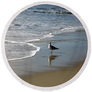 Waiting For Lunch On Shore Round Beach Towel