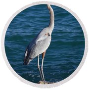 Watching For Fish Round Beach Towel