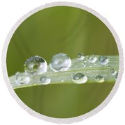 Water Drop On Blade Grass Round Beach Towel