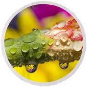 Water Drops On A Budding Flower Round Beach Towel