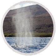 Water From A Whale Blowhole Round Beach Towel