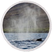 Water From A Whale Blowhole II Round Beach Towel