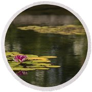 Water Lilies And Lily Pads Round Beach Towel