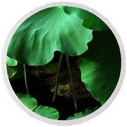 Water Lilies Of Green Round Beach Towel
