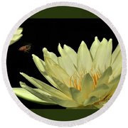water lily 3 Yellow Water Lily with Bee Round Beach Towel