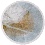 Water Lily Leaf In Ice, Boggy Lake Round Beach Towel