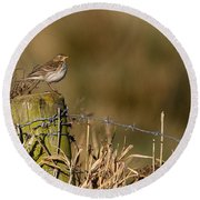 Water Pipit On Post Round Beach Towel