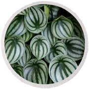 Watermelon Leaves 2 Round Beach Towel