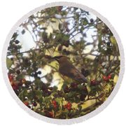 Wax Wing In A Berry Tree  Round Beach Towel
